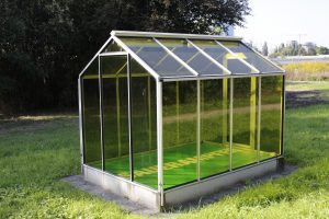 Grüne Soße Denkmal Sauerampfer